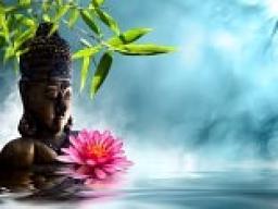 Webinar: Seelenweisheiten und Seelenübungen nach Master Sha