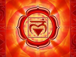 Webinar: Matrixklärung, Bereich 1. Chakra