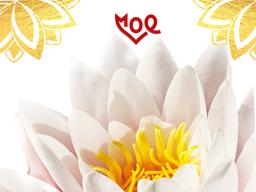 Webinar: Deine BewusstSEIN Sonne - Lehre + Seelen-Labung