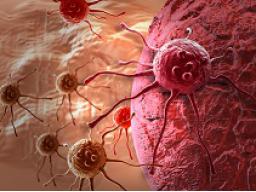 Webinar: Krebs- die Botschaft der Seele