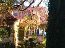 Webinar: house of 7 miracles - Dein Sein