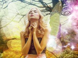 Webinar: Aktion: Deine Persönliche Engel Botschaft