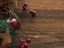 Webinar: Seelenschaukel-Zeit zum Weihnachtsfest