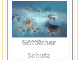 Webinar: Göttlicher Schutzkreis für Tiere