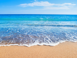 Webinar: Die Heilkraft des Meeres