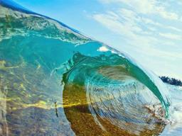 Webinar: Unterstützung der Wesen des Wassers