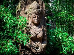 Webinar: Lass Dich beschenken - empfange Herzensgüte von Xin Tara, einer hohen Heiligen aus längst vergangenen Zeiten.