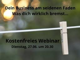 Webinar: Dein Business am seidenen Faden - was dich wirklich bremst