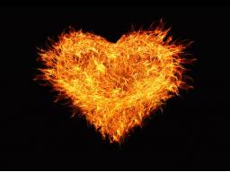 Webinar: Leseprobe: Antriebslos, erschöpft und ausgebrannt? Über 50 ganzheitliche Maßnahmen, um das innere Feuer wieder zu entfachen.