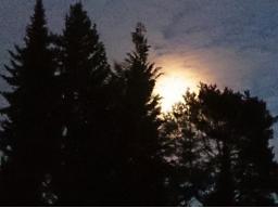 Webinar: Meditation zum Vollmond, Thema: SELBSTHEILUNG