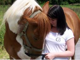Webinar: ✮Schamanische Tierheilung-lerne die Schamanische Heilung beim Tier✮