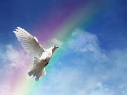 Webinar: Gerechtigkeit, Ausgleich und Fülle/Reichtum (Lebensaufgabe 8)