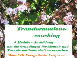 Webinar: Ausbildung - Mental- und Transformationscoach zur Blockadenlösung-  /Modul II -Energetische Frequenzen..
