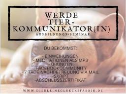 Webinar: Werde Tierkommunikatorin - Tierkommunikation leicht gemacht