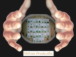 Webinar: *AKTION* exklusiver Einzeltermin, mediales Kartenlegen