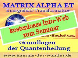 Webinar: FÜR NEUEINSTEIGER - Grundlagen der Quantenheilung - kostenloses Info-Webinar zum Seminar
