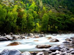 Webinar: Der Fluss des Lebens - ins Vertrauen kommen