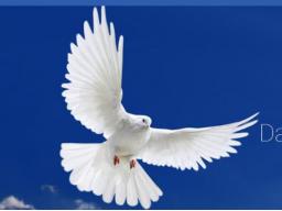 Webinar: Lebe dein göttliches Erbe. Öffne deinen Seelentresor