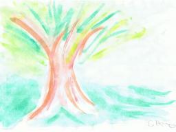 Webinar: Yoga für das Nerven- und Hormonsystem