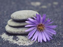 Webinar: Oneness Deeksha