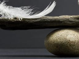 Webinar: achtsamkeit und nun ?