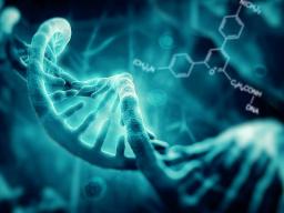 Webinar: 4.DNS Strang Aktivierung + Die Erbe des Lichts + Aufstieg in das 5.Dimension