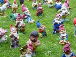 Webinar: Die Zwerge laden zum Zwergenfest ein