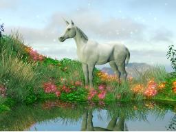 Webinar: Regenbogensphäre der Einhorndevas-Einweihung