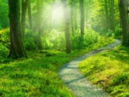 Webinar: Spirituelle Beratung nur für dich erhalten!
