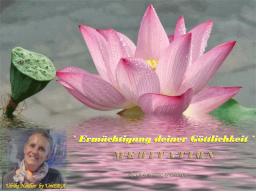 """Webinar: - """"HERZ MEDITATION """"zur """"Ermächtigung deiner Göttlichkeit"""""""