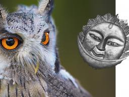 Webinar: Sonne + Mond in der Sekundärdirektion: Persönlichkeitsentwicklung auf leisen Sohlen