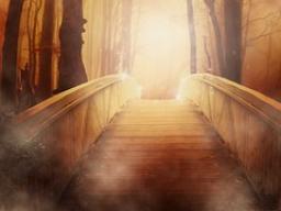 Webinar: Brücke des Lichts