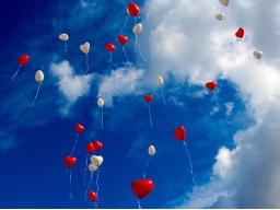 Webinar: Einführungswebinar für Herzöffnung und Glückseligkeit