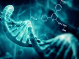 Webinar: 6.DNS Strang Aktivierung + Die Erbe des Lichts + Aufstieg in das 5.Dimension