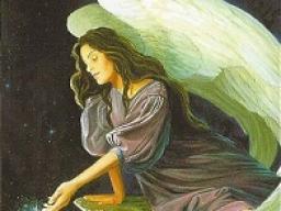 Webinar: Engel der Manifestation
