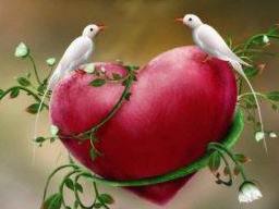 Webinar: Heart-Flow