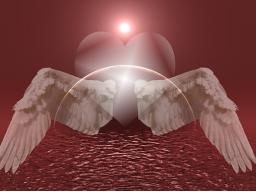 Webinar: Engel Reinigung mit Schutzkreis