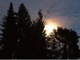 Webinar: Meditation zum Vollmond