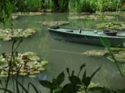 Webinar: Meditation Fluss