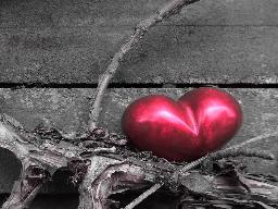 Webinar: Blockadenlösung Herz - Selbstvergebung - 20 % Gutschein