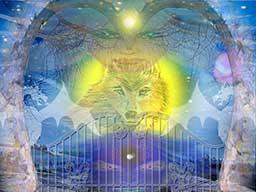 Webinar: 6. Januar Heilige Drei Könige