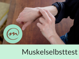 Webinar: Teste was dir gut tut- Muskelselbsttest