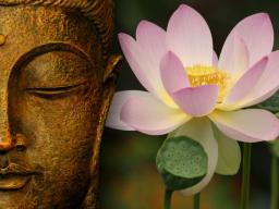 Webinar: Heile deine Emotionen durch die Kraft der Seele
