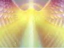 Webinar: Blicke in dein Seelenlicht - schriftliche ausführliche Beratung AKTION*