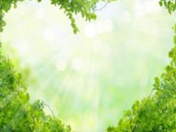 Webinar: Live Mediation - Segensreicher Frühling, Du erwärmst unsere Herzen und schenkst uns Freude