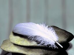 Webinar: Leicht V.S. Schwer in deinem Körper und deinem Wesen