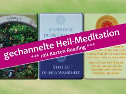 Webinar: *** gechannelte Heil-Reise ***