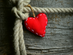 Webinar: Field of Love Global Healing Session