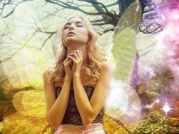 Webinar: Deine Persönliche Engel Botschaft