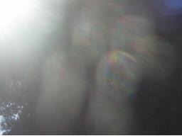 Webinar: der Sonnenweg in der Waage